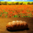 Bread of Life - Stock Photo