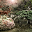 Stylized landscape of a Japanese Garden - Stock Photo