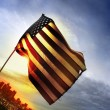 Stock Photo: Old Glory