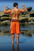 Bodybuilder zurück — Stockfoto