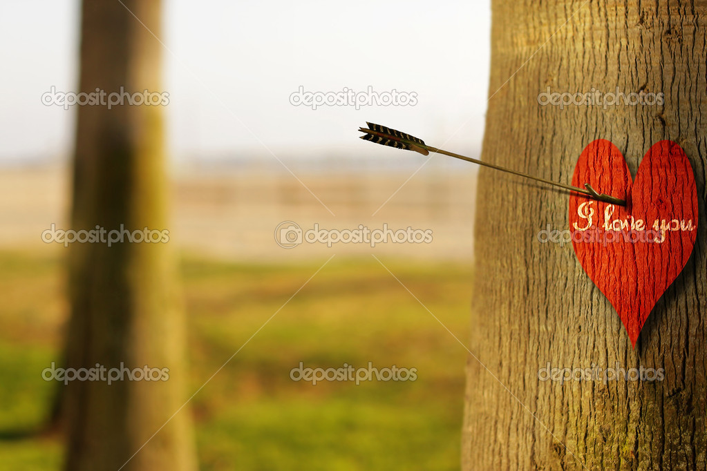 Abstract concept photograph of an arrow peircing a red heart on tree with phrase I Love You — Stock Photo #8501860