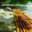 Bamboo raft - Stock Photo