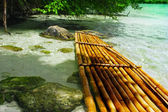 Bamboo raft — Stock Photo
