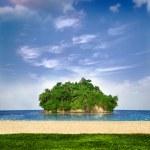 Little island off shore — Stock Photo #9393357