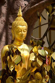 Buddha statue in Tiger temple with golden leaves, Krabi, Thailan — Stock Photo