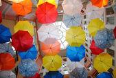Tavan şemsiye — Stok fotoğraf