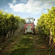 Stock Photo: Tractor in the vineyard spraying toxic protection
