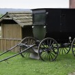 Amish horse buggy — Stock Photo