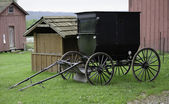 Amish paard buggy — Stockfoto