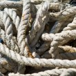 Marine rope. — Stock Photo