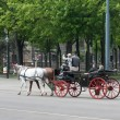 The carriage on the streets of Vienna — Stock Photo