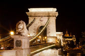 Chain Bridge over the Danube in Budapest. — Stock Photo