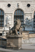 Lion statue in the Hofburg palace in Vienna, Austria — Stock Photo