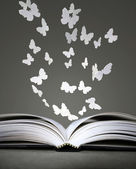 Open book and butterflies — Stock Photo