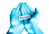 Offer for Freedom — Stock Photo