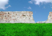 Grass, brick wall and sky — Stock Photo