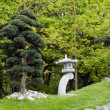 Stock Photo: Bonsai trees in japanese garden
