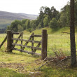 Wooden fence in Scotland — Stock Photo #10140346
