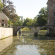 Moat and bridge - Stock Photo