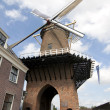 Windmill in Dutch Duurstede - Stockfoto