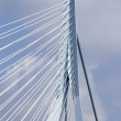 Close up of the  Erasmus bridge — Stock Photo