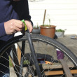 Man repairing bicycle tire — Stock Photo