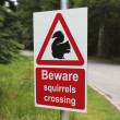 Stock Photo: Beware squirrels crossing