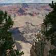 View at Grand Canyon — Stock Photo