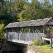 Covered bridge in Vermont — Stock Photo #8693682