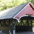 Covered bridge in Vermont — Stock Photo #8693821