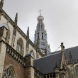 Great st bavo cathedral in the Netherlands - Stock Photo