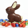 Chocolate bunny with eggs — Stock Photo