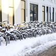 A row of snowcovered bikes - Stock Photo