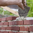 Trowel spreading cement on bricks - Lizenzfreies Foto