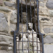 Old medieval stone statue in wall of Virgin mary with child — Stock Photo