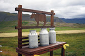 Milk churns — Stock Photo