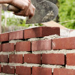 Bricklaying — Foto de Stock