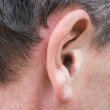 Male ear — Stock Photo