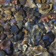 Stones at the bottom of a stream. - Stock Photo