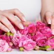 Manicure on the roses - Foto Stock