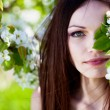 Brunette girl in blossom garden — Stock Photo