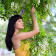 Girl near blossom acacia tree — Stock Photo #10539740