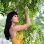 Girl near blossom acacia tree — Stock Photo