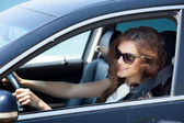 Girl driving a car — Stock Photo