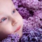Lilac — Stock Photo #8948674