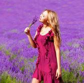 ラベンダー畑の少女 — ストック写真