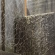 Messy Spider Web on Wood — Stock Photo #8489691