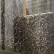 Stock Photo: Messy Spider Web on Wood
