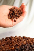 Coffee Beans and Human Hand — Stock Photo