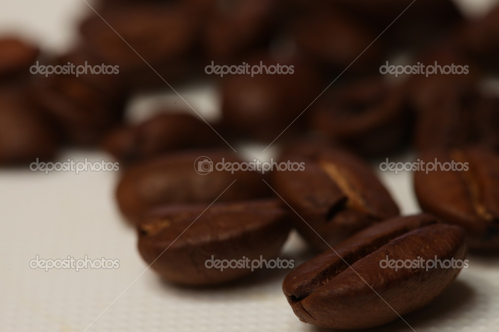 Coffee Beans Medium Roast level in white background — Stock Photo #8490204